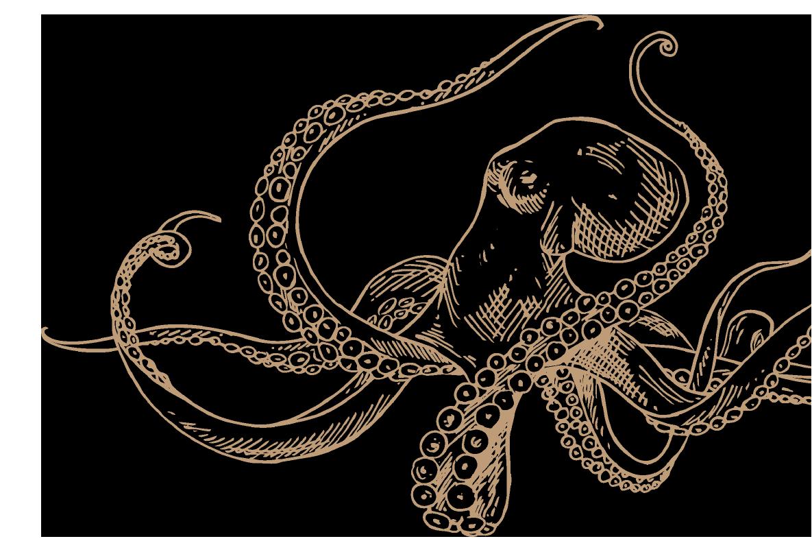 rodos-goodtaste-octopus
